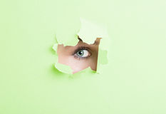 Female model eye with make-up looking thru ripped cardboard Stock Images
