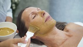 Female model is getting medicine treatment procedure for cleaning and skin rejuvenation. Woman is lying with facial clay mask. professional cosmetologist and stock video