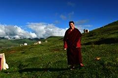 Female Monk in Tibet Royalty Free Stock Image
