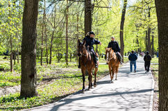 Female mounted police on horse back in the city park Royalty Free Stock Photo