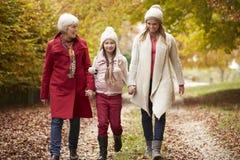 Female Multl Generation Family Walking Along Autumn Path Stock Images
