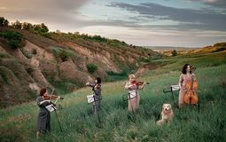 Female musical quartet with violins and cello plays on flowering meadow next to sitting dog. Female musical quartet with three violins and one cello plays on royalty free stock images