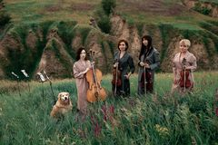 Female musical quartet with violins and cello prepares to play at flowering meadow. Female musical quartet with three violins and one cello prepares to play at royalty free stock photo