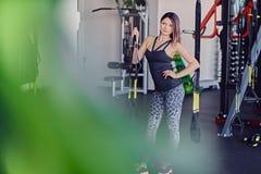 Female near trx straps stand. Slim sporty female posing near trx straps stand in a gym club Stock Photo