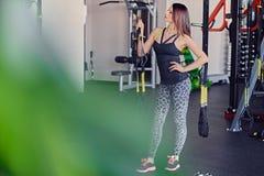 Female near trx straps stand. Slim sporty female posing near trx straps stand in a gym club Stock Photography