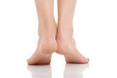Female nude feet. Female beautiful slim nude feet Stock Photos