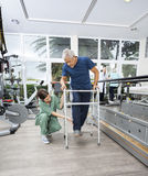 Female Nurse Assisting Senior Patient With Walker In Fitness Stu. Young female nurse assisting senior male patient with walker in fitness studio of rehab center Royalty Free Stock Photos
