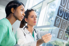 Female nurse and doctor looking at xrays Stock Images
