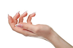 Female Open Hand. As Holding Something Royalty Free Stock Photo