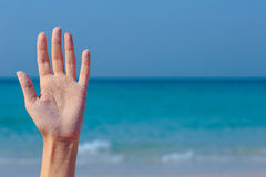 Female open hand on sea background. Female open hand on blue sea background royalty free stock images