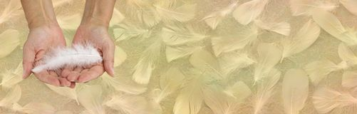 Receiving Angelic help golden feather background banner stock image