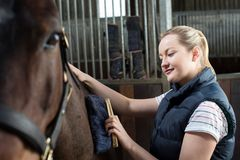 Female Owner In Stable Grooming Horse With Brush. Owner In Stable Grooming Horse With Brush Stock Photography