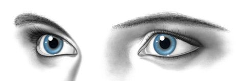 Female pair of eyes Stock Images