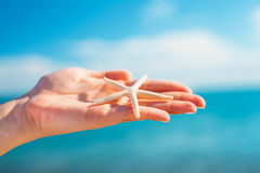 Female palm holding starfish in front of blue sky and sea Royalty Free Stock Photos