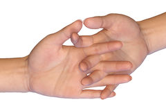 Female palms are touching with interlaced fingers Royalty Free Stock Photos