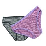 Female panties Stock Photos