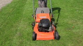 Female peasant woman in dress push lawn cut grass with mower cutter. 4K stock footage
