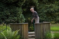 A female pensioner minigolf player in position to hit the ball o Royalty Free Stock Image