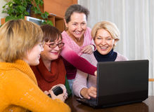 Female pensioner studying laptop Stock Image