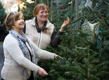 Female pensioners buying New Year tree at fair Royalty Free Stock Image