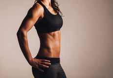 Female with perfect abdomen muscles Stock Images