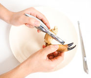 Female person eating crab claw over plate. With crab fork Stock Photography