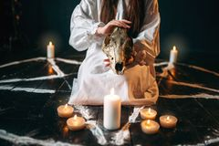Female person holds skull in hands, magic ritual. Female person in white shirt holds animal skull in hands, pentagram circle with candles. Dark magic ritual Stock Image