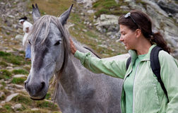 Female is petting a horse. A young woman is petting a horse in the mountains royalty free stock photos