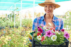 Female with petunias Royalty Free Stock Photo