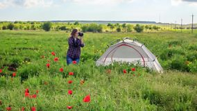 Female photographer on flower field near travel tent. Young beautiful woman in checkered shirt stands near tent on field in the middle of green grass, yellow stock video footage