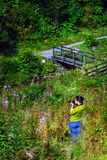 Female photographer. A female photographer in nature, on a sunny day facing diagonally through the image. She is surrounded by green vegetation and foliage, with Stock Photo