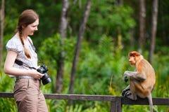 Female photographer and proboscis monkey Royalty Free Stock Photo