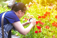 Female photographer with professional digital camera. Stock Photography