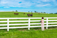 Female photographer taking picture of country landscape with hor Royalty Free Stock Photos