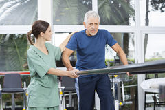 Female Physiotherapist Motivating Senior Patient To Walk Between. Parallel bars in rehabilitation center Royalty Free Stock Image