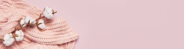 Female pink knitted sweater pullover and branch of cotton on pastel pink background top view flat lay. Fashion Lady Clothes Jumper. Female pink knitted sweater stock image