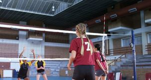 Female players playing volleyball in the court 4k stock video footage