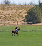 Female Polo Player Heading For Goal. A female polo player heads for the goal in the Chukkers for Charity polo match in Bend, Oregon Stock Photo