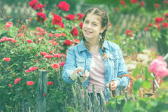 Female posing near roses and holding a basket in the garden Stock Images