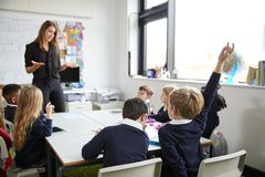 Female primary school teacher standing in a classroom gesturing to schoolchildren, sitting at a table raising hands royalty free stock image