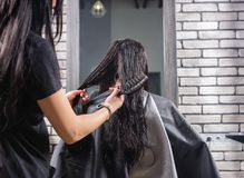 Female professional stylist combing wet hair of young brunette w. Omen while she is sitting in armchair in beauty salon Royalty Free Stock Photo