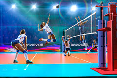 Free Female Professional Volleyball Players In Action On Grand Court Royalty Free Stock Images - 96809049