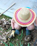 Female pulling weeds. Royalty Free Stock Image