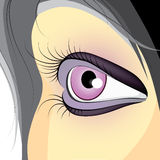 Female purple eye  Stock Image