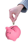 Female putting a coin euro. Female hand putting a coin euro in a piggy bank isolated on white with clipping path Stock Photo