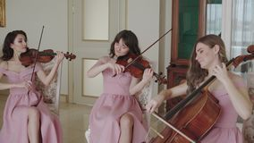 Female quartet play on stringed instruments in a room stock video