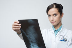 Female radiologist checking x-ray image Stock Photo