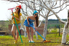 Female raking soil on garden Stock Photography