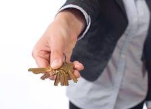 Female real estate agent keys Royalty Free Stock Image