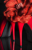 Female red high-heeled shoes. Stock Photo